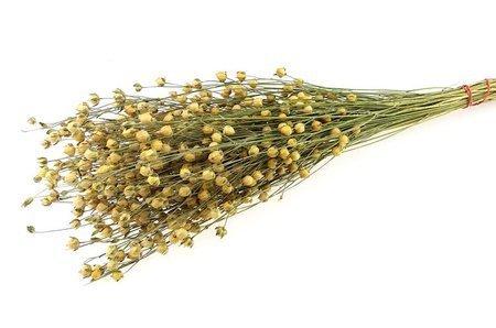 LEN KOLOR NATURALNY 2 rozgałęziony naturalny len suszony niebarwiony dodatek florystyczny