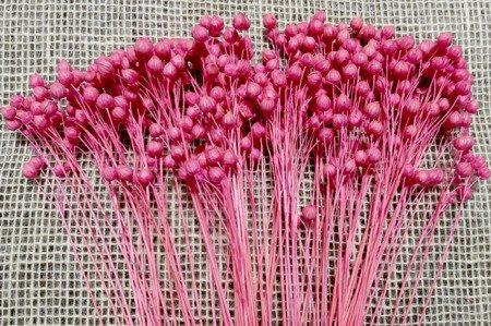 Len barwiony kolor różowy pęczek 50 cm
