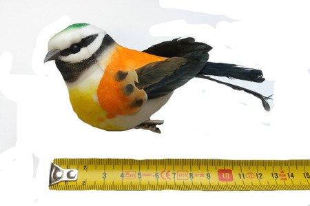 Ptaszek dekoracyjny pomarańczowy z zielonym łebkiem